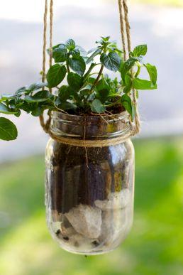 herb-planter